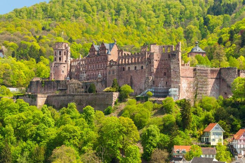 ,Excursión a Heidelberg
