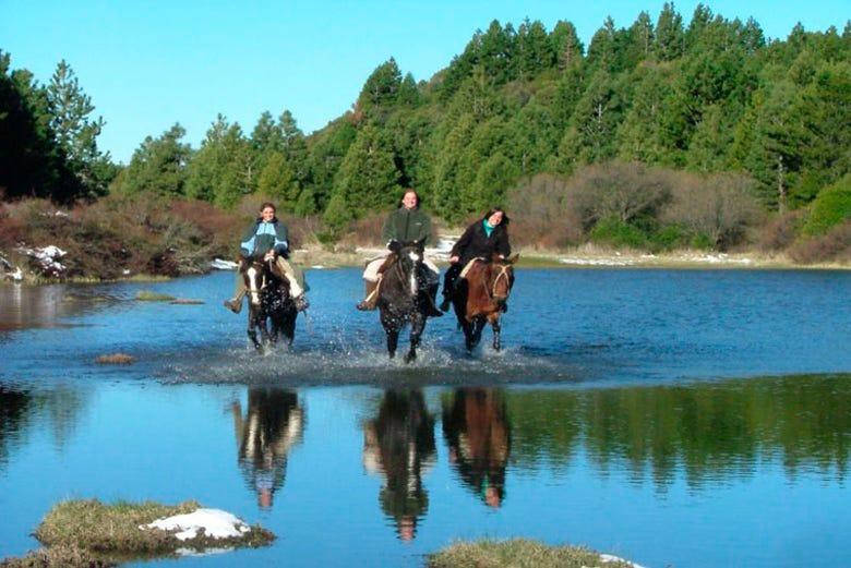 ,Excursión a la Patagonia en caballo