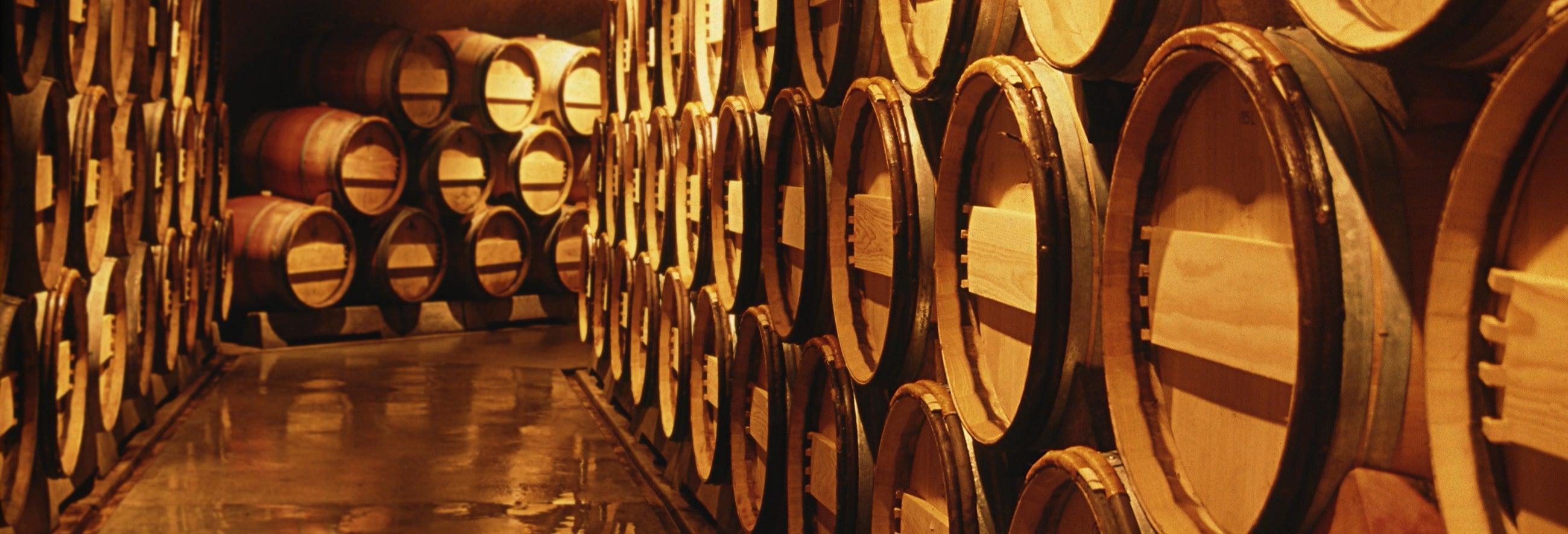 Tour della Valle di Calingasta + Degustazione di vini