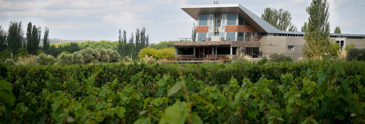 Mendoza Wineries Private Trip