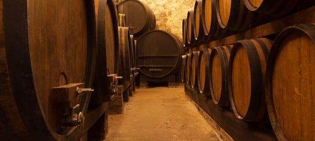 Tour de vinos, destilados y cervezas