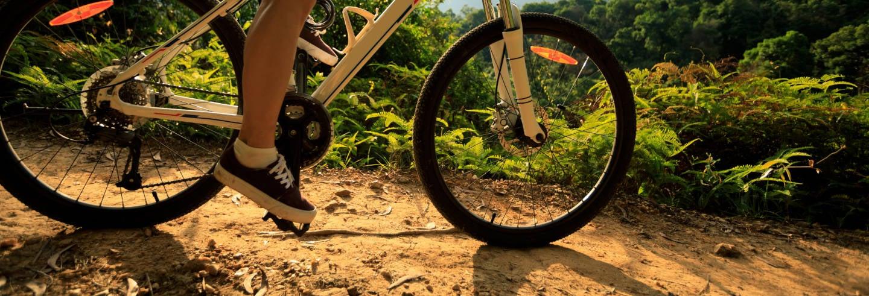 Tour de bicicleta por Foz do Iguaçu