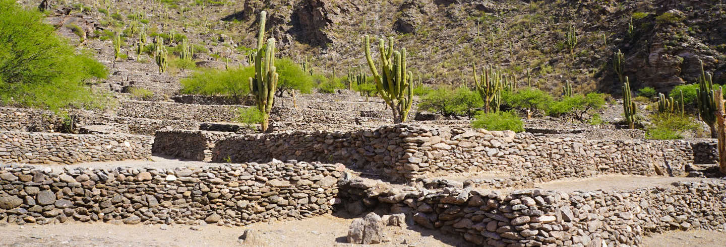 Tafi del Valle and Quilmes Ruins Trip