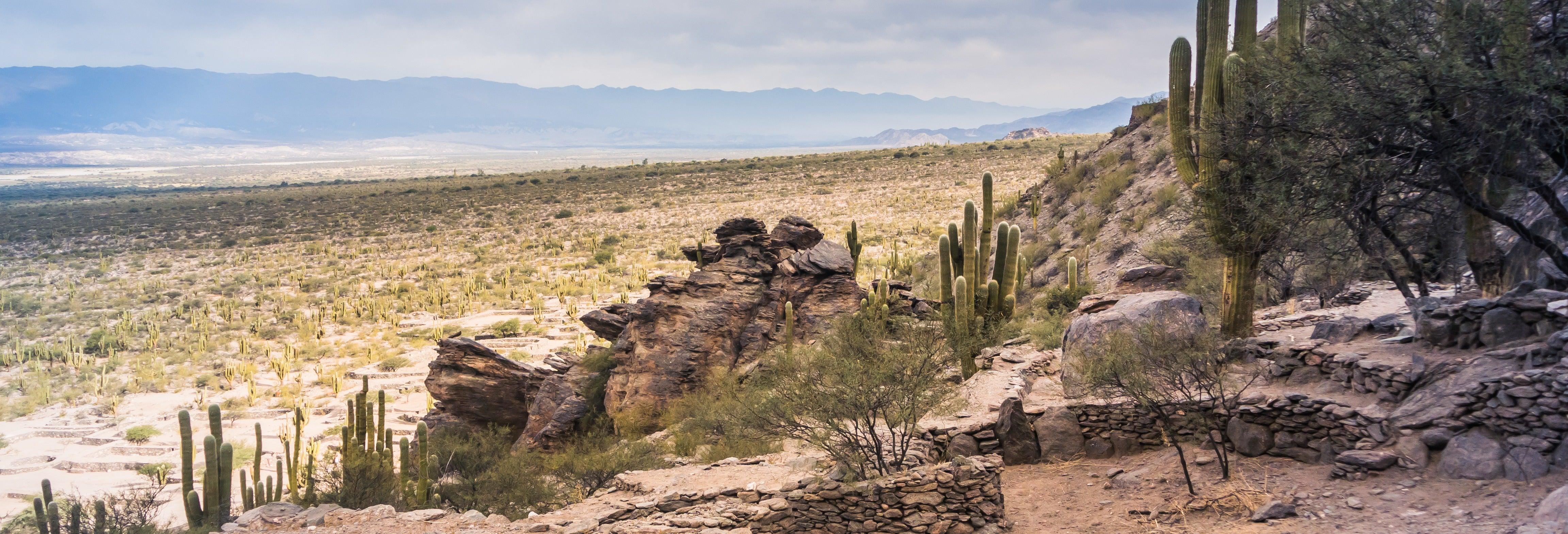 Excursão a Tafí del Valle e ruínas de Quilmes
