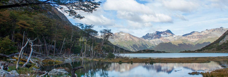 Encuentro con castores en la Laguna Esmeralda