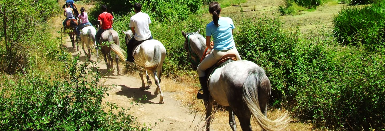 Passeio a cavalo pelo norte de Aruba