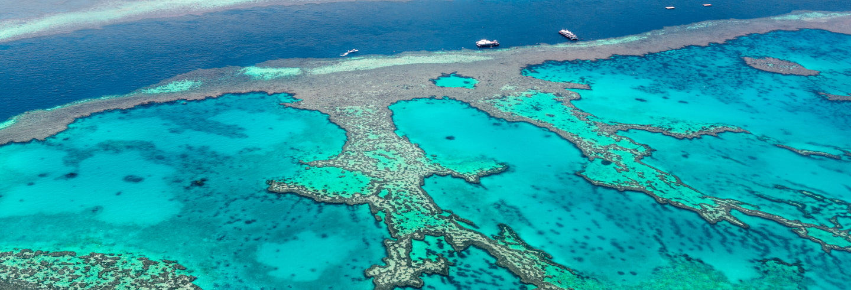 Excursion de 3 jours à la Grande Barrière de Corail