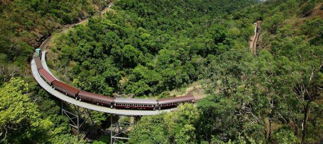 Excursión a Kuranda en tren panorámico + Teleférico