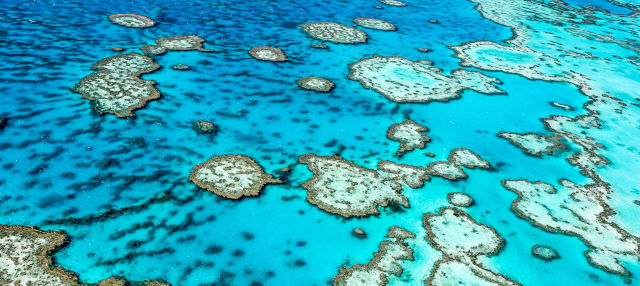 Excursión de 3 días a la Gran Barrera de Coral