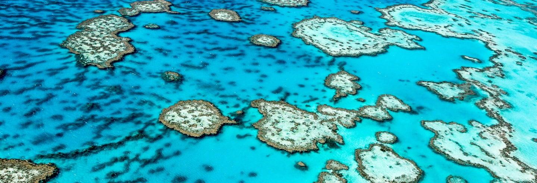 Excursão de 3 dias à Grande Barreira de Corais