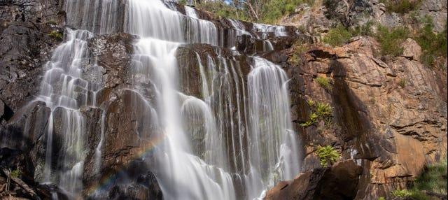 Excursión al Parque Nacional Grampians