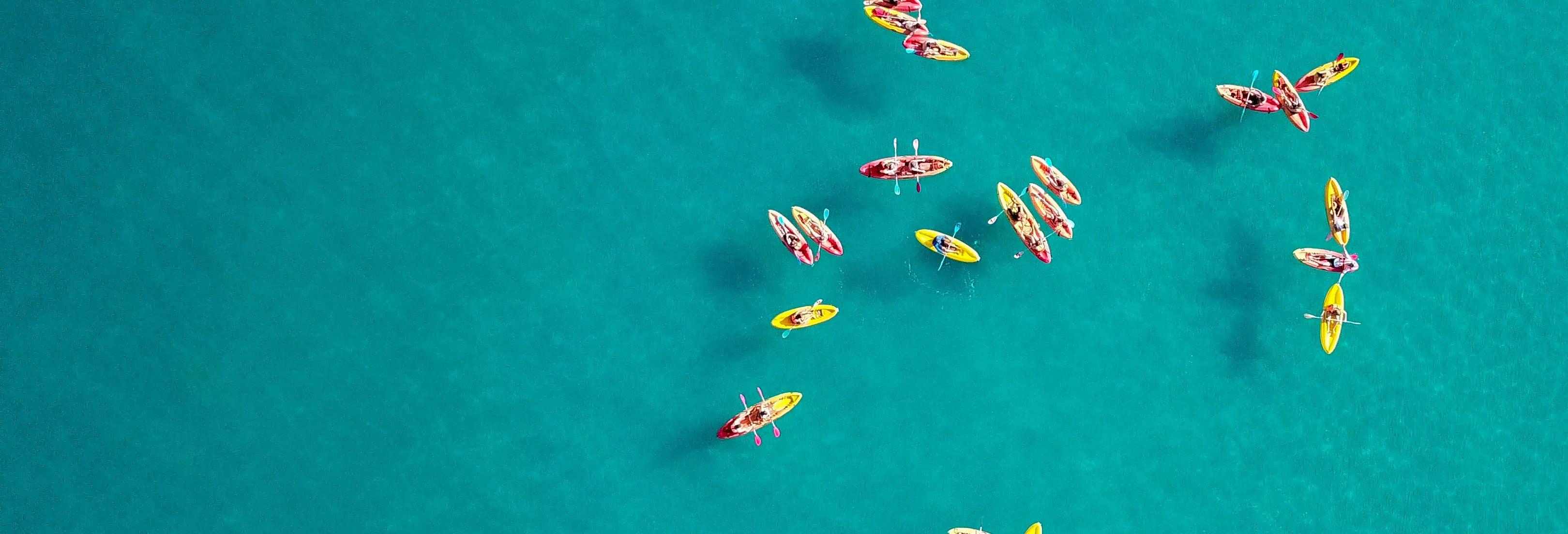 Dolphin View Kayak Tour