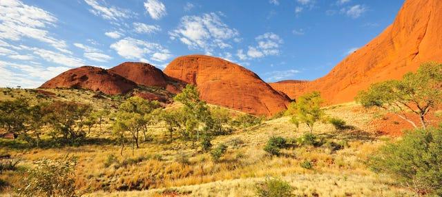 Alquiler de bicicleta en Uluru-Kata Tjuta