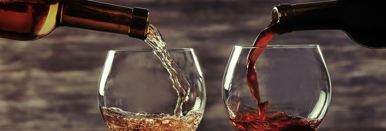 Cata de vinos en Viena
