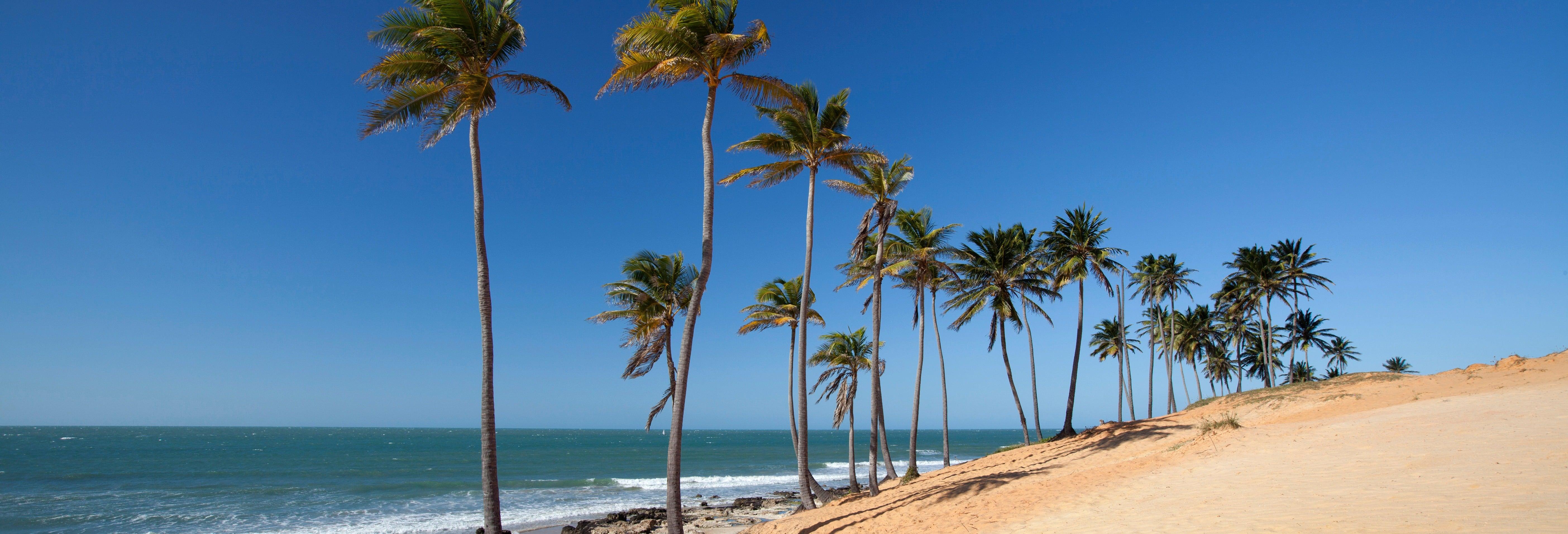 Lagoinha Beach Day Trip