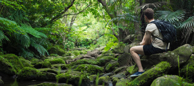Tour de 3 días por la selva amazónica