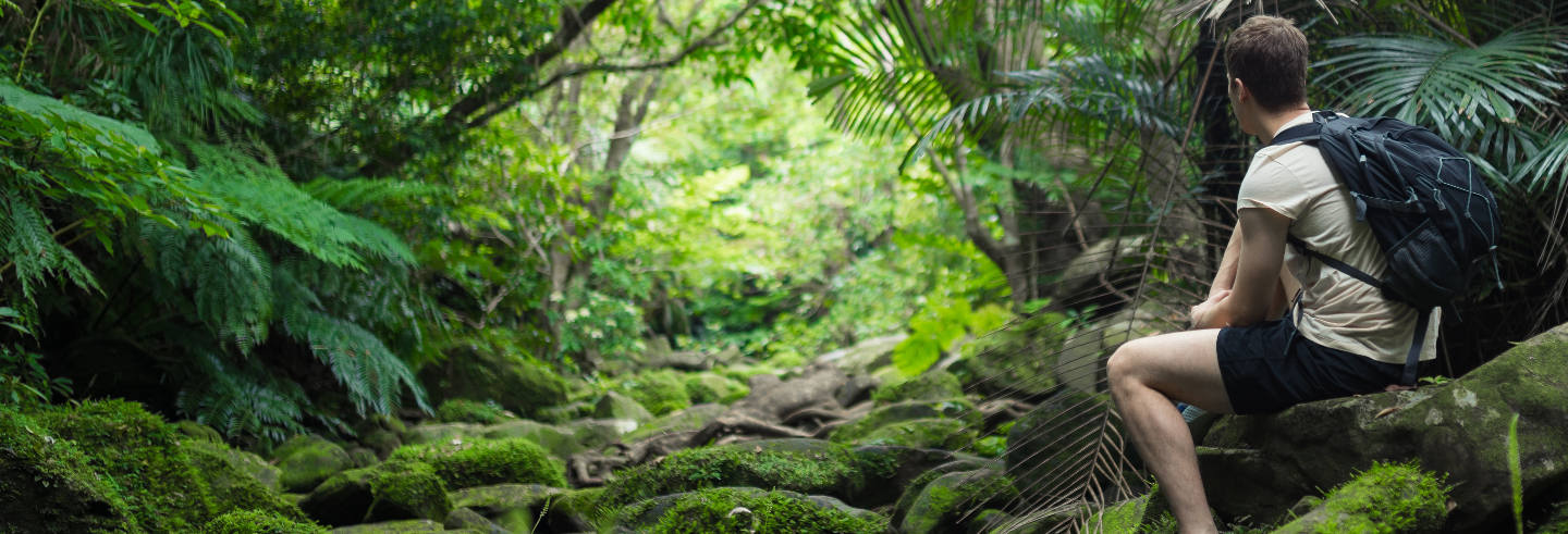 Excursion de 3 jours dans la forêt amazonienne