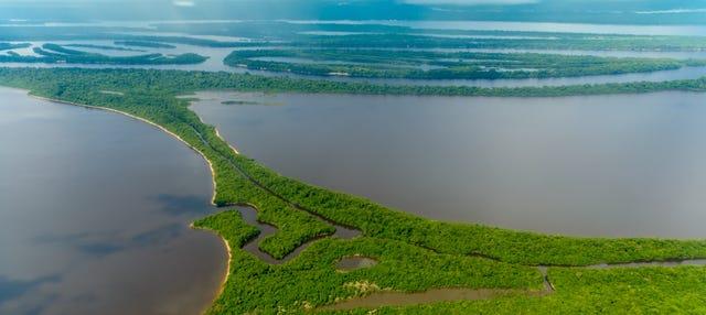 Tour por la selva amazónica y las islas Anavilhanas