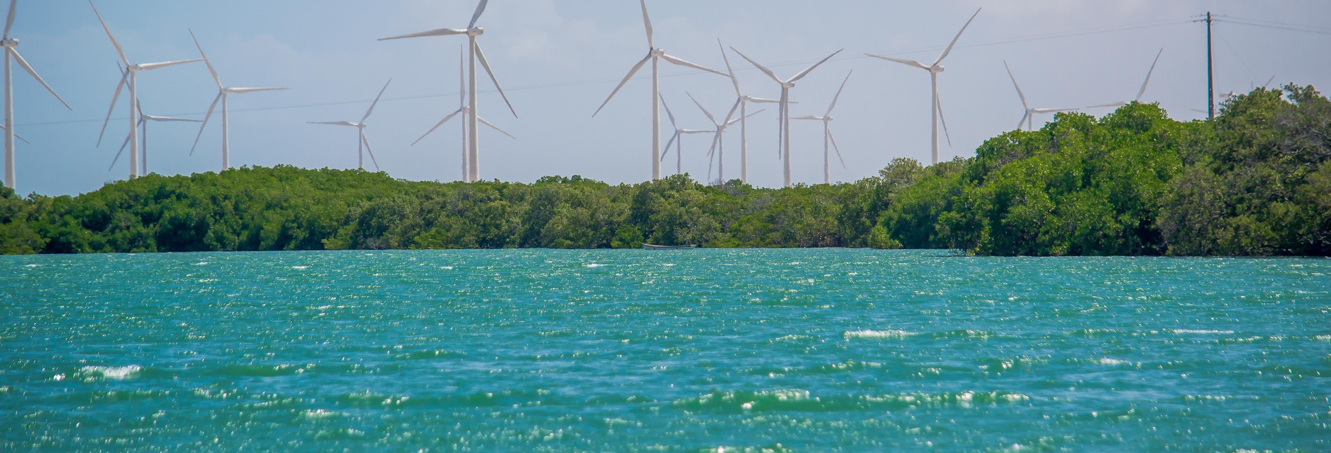 Excursión a Galinhos + Paseo en barco