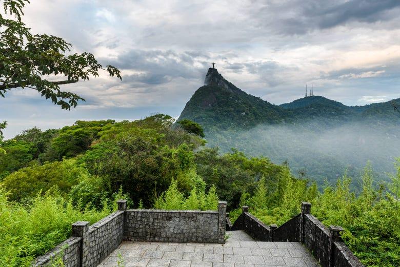 ,Tour por Río de Janeiro,Parque Nacional de Tijuca