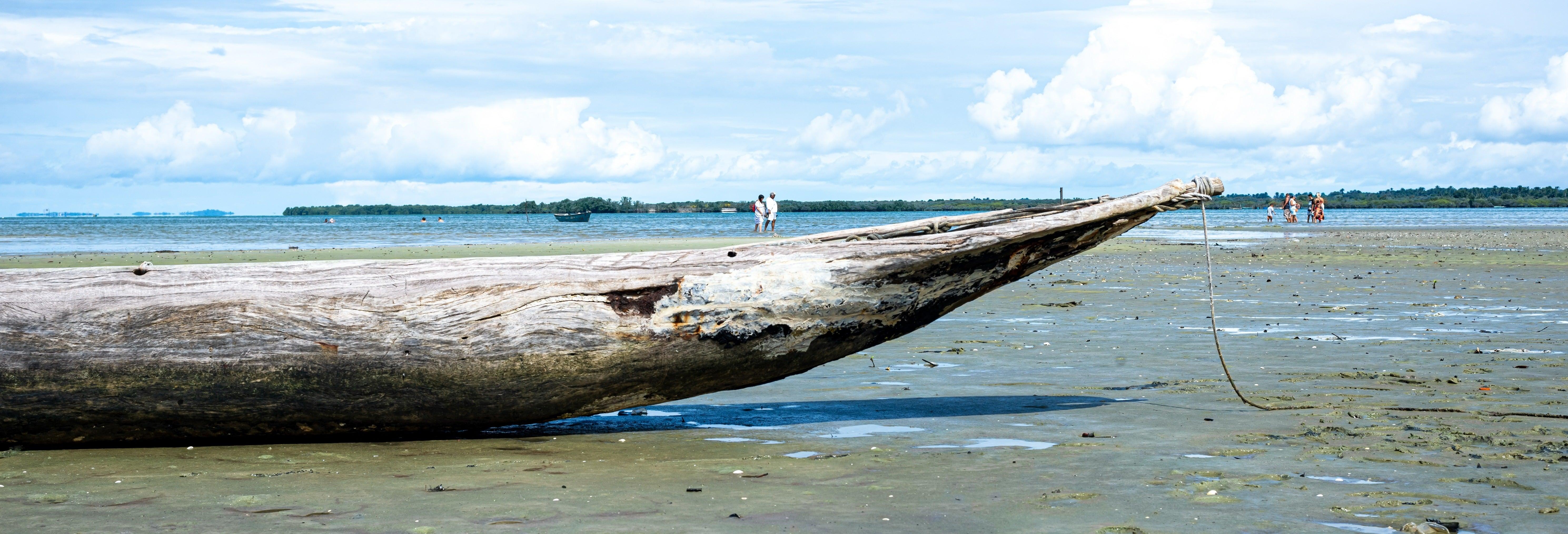 Excursão à ilha de Santo Amaro