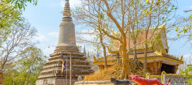 Excursión a Phnom Baset y Udong