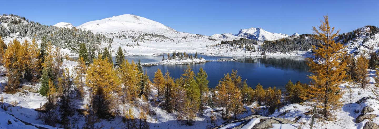 Passeggiata con le racchette da neve a Sunshine Meadows