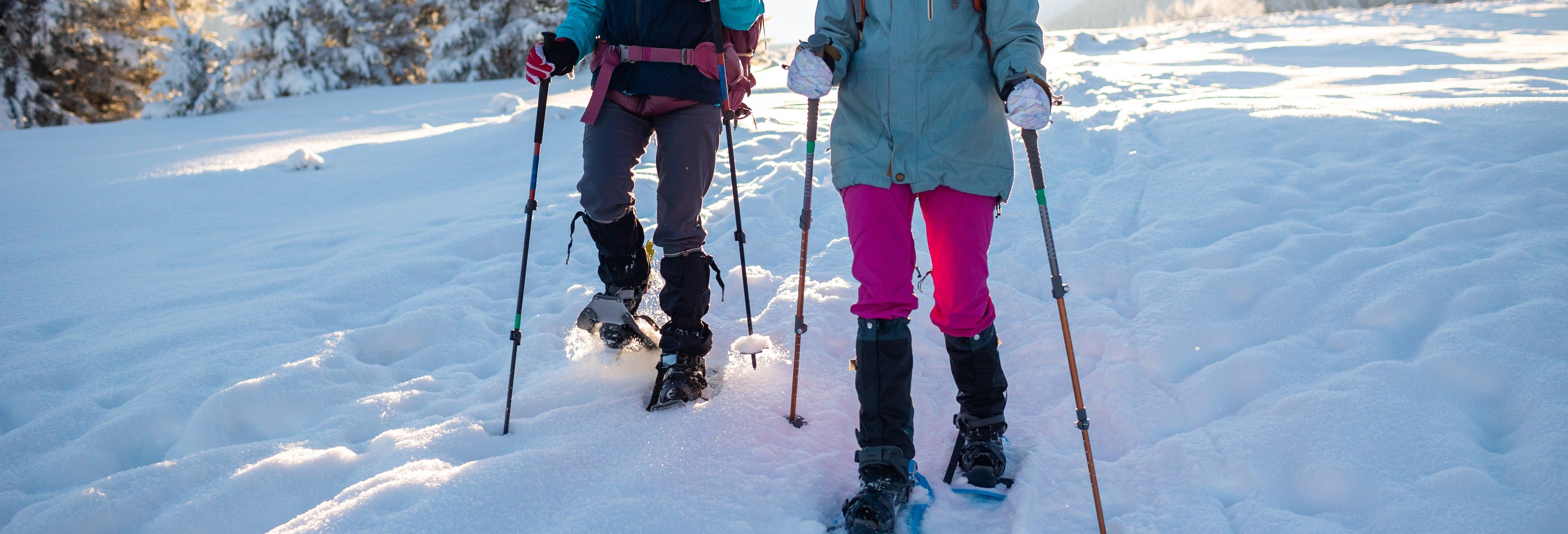 Passeggiata con racchette da neve a Banff