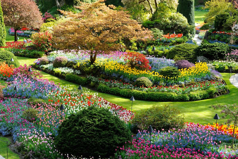 Excursi n a los jardines butchart victoria for Jardines butchart