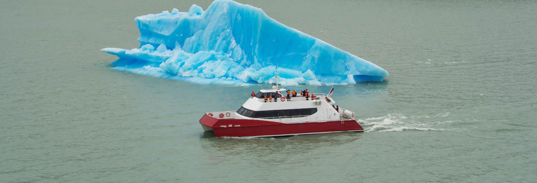 Excursión en barco al lago Grey