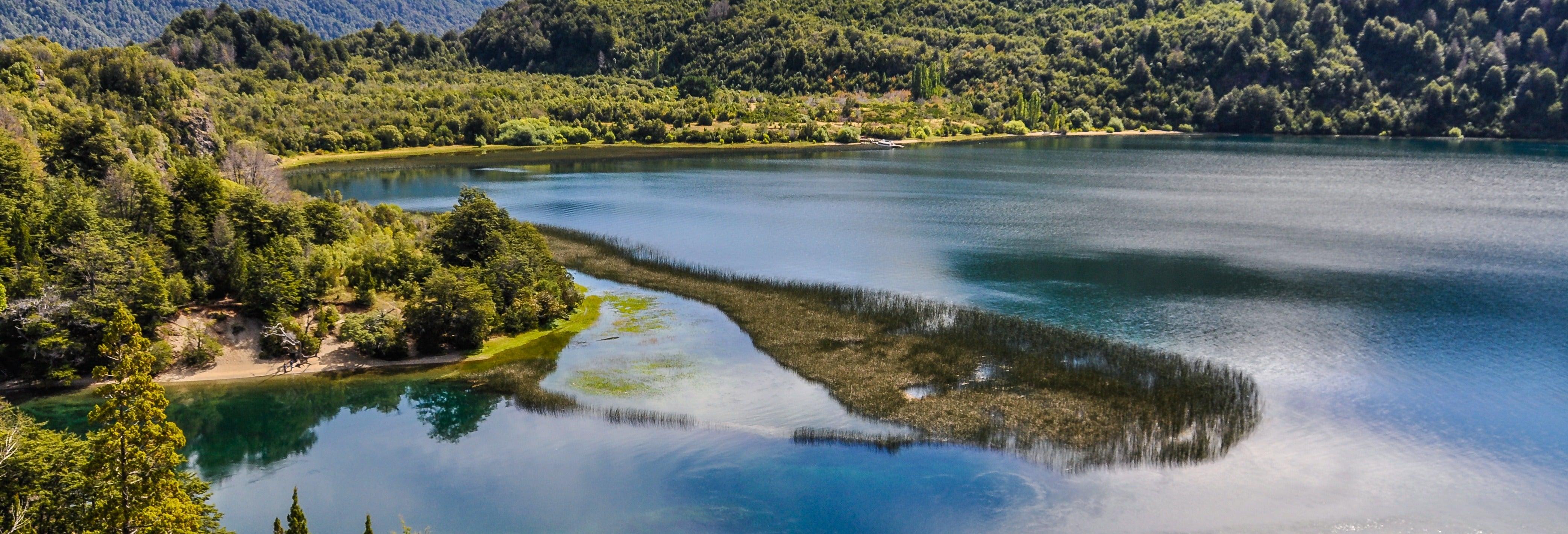 Alerce Andino National Park Trek