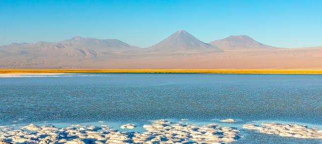 Excursión a la laguna Cejar, Tebenquiche y los Ojos del Salar