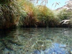 ,Excursión a las Termas de Puritama,Excursion to Puritama Hot Springs