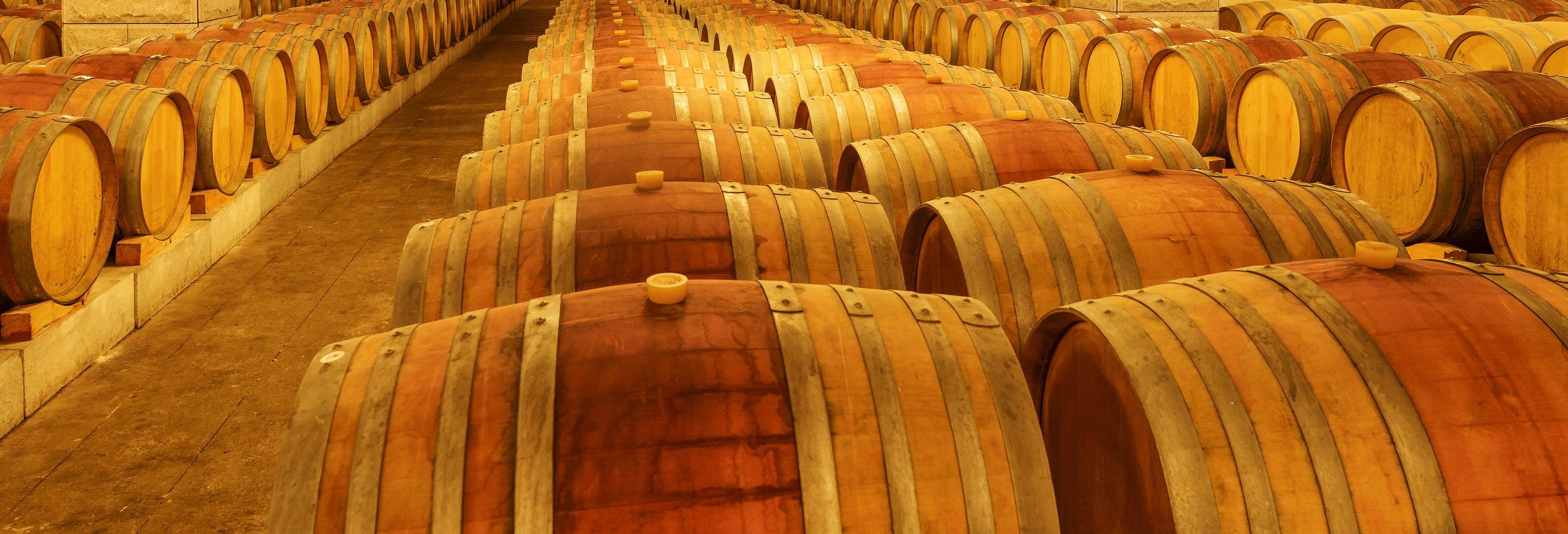 Excursion dans le domaine viticole d'Undurraga