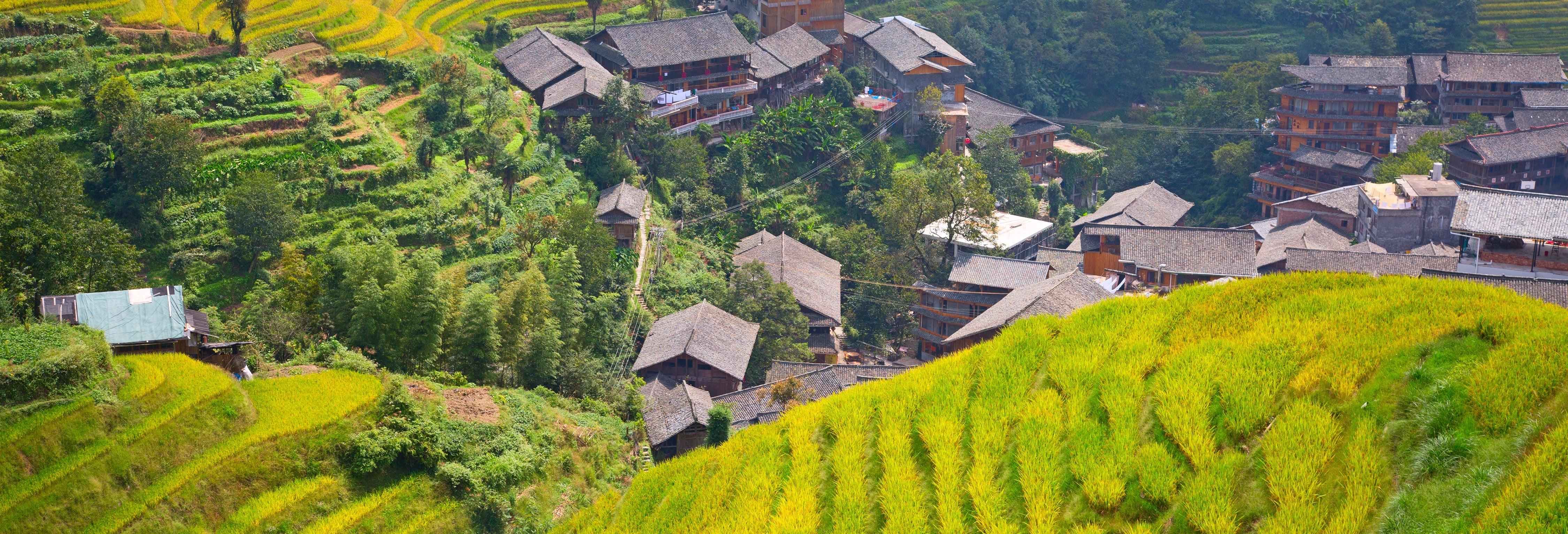 Tour por las terrazas de arroz