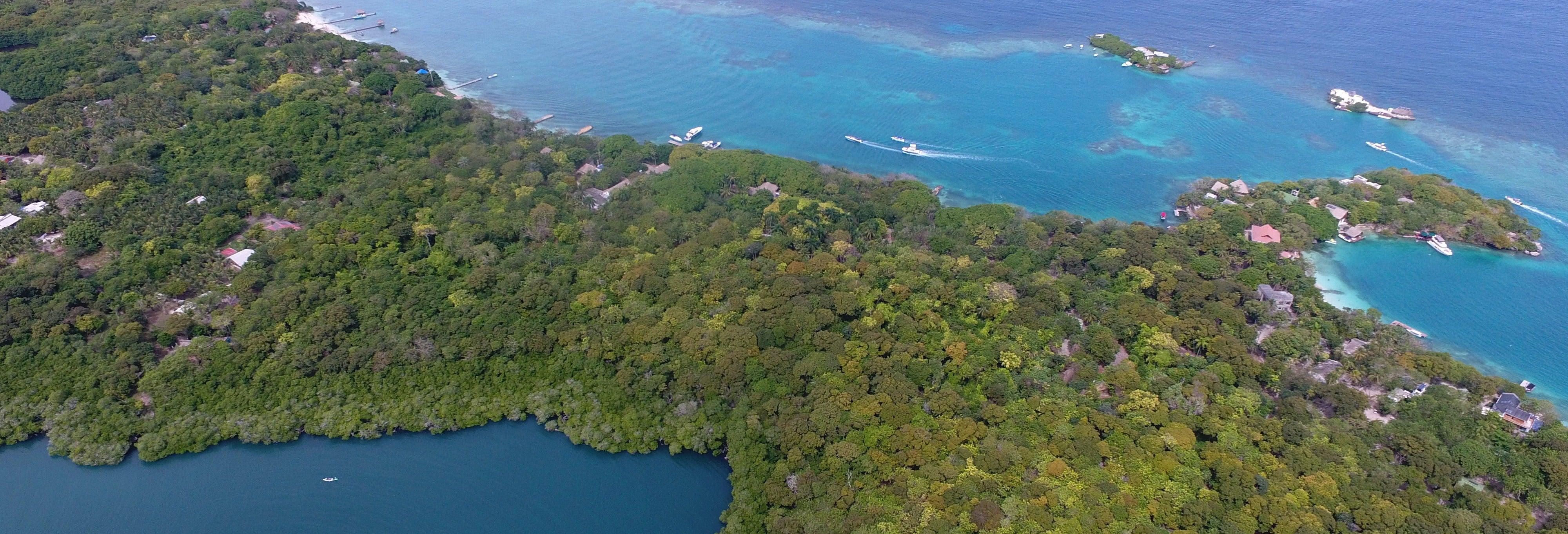 Excursión a la Isla de Cocoliso