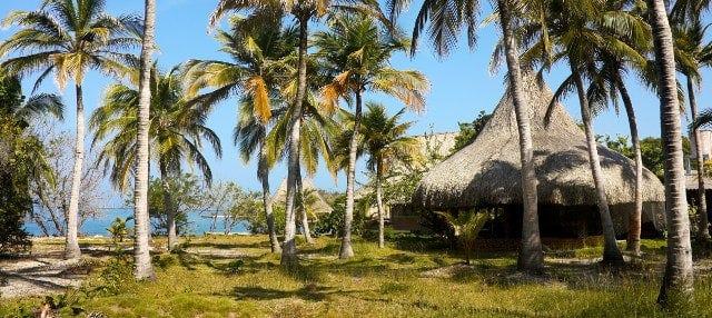 Excursión a la Isla del Encanto