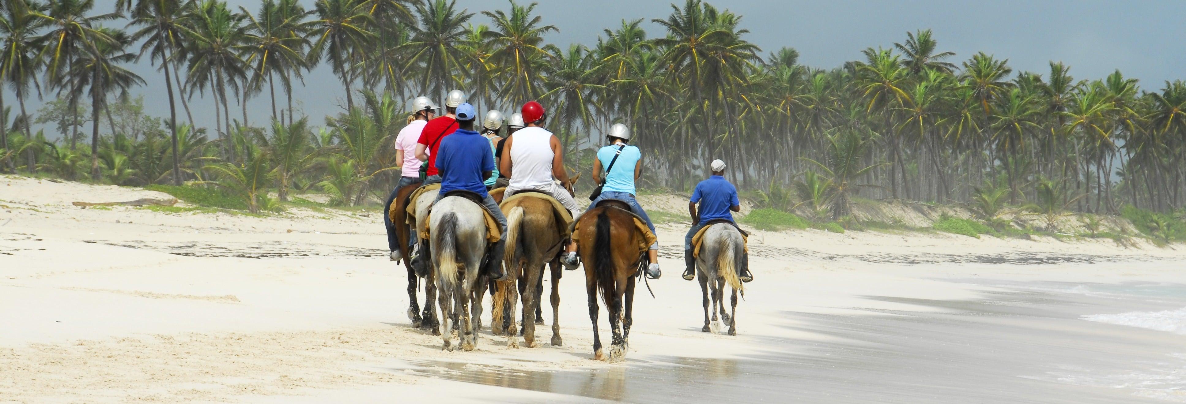 Paseo a caballo por Providencia