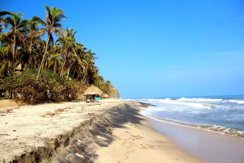 Resultado de imagen de playa palomino