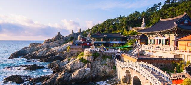 Visita guiada por Busan