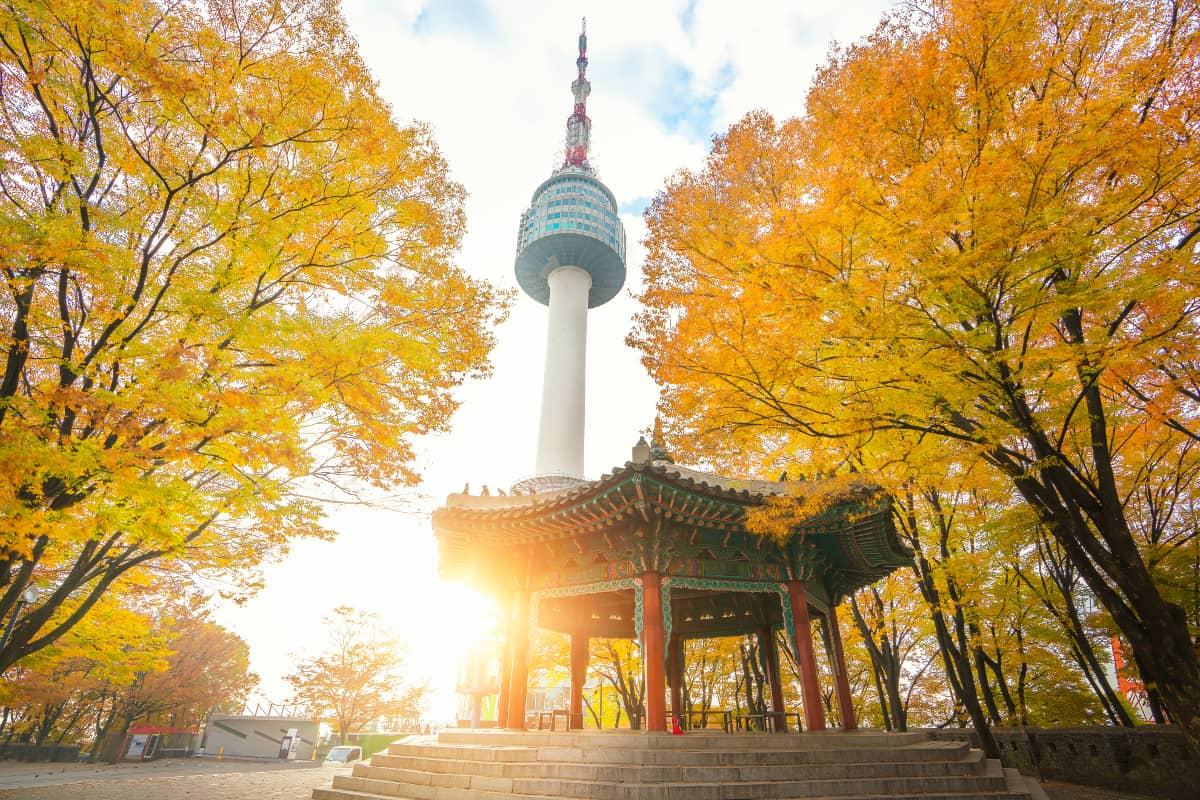Seoul Tower and Korean War Memorial Museum Tour - Civitatis.com