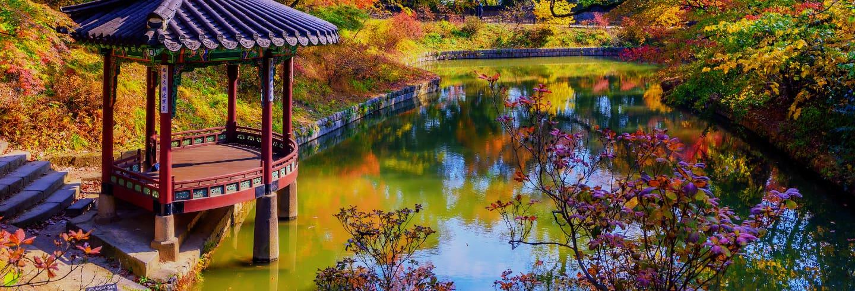 Tour por los palacios Changdeokgung y Changgyeonggung