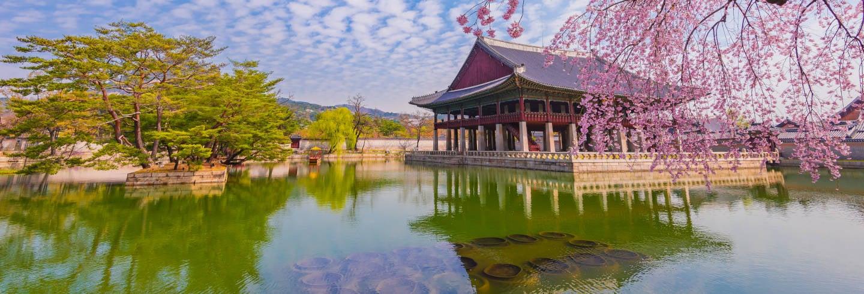 Visita guiada por el Palacio Gyeongbokgung