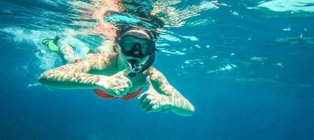 Snorkel en la Isla del Caño