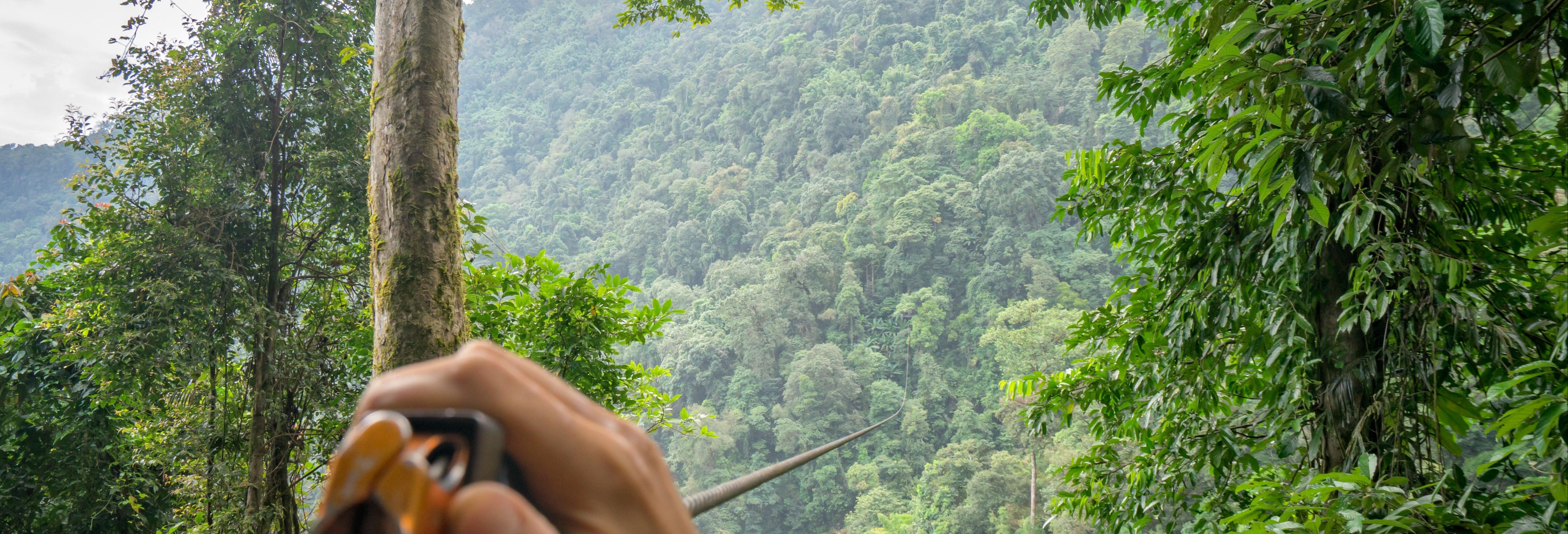 Zip line sulla foresta tropicale