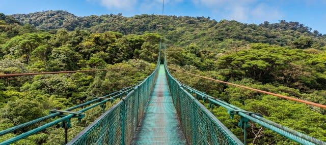 Excursión al Bosque Nuboso Monteverde