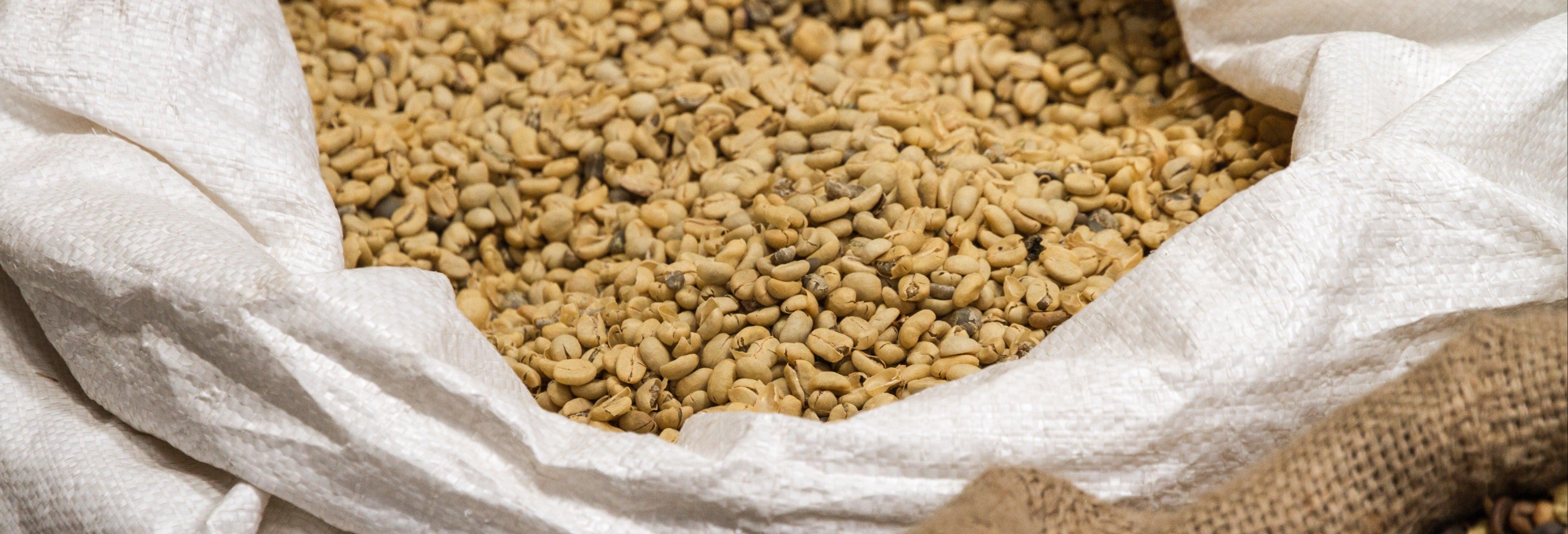 Doka Coffee Plantation, Grecia & Sarchí Tour
