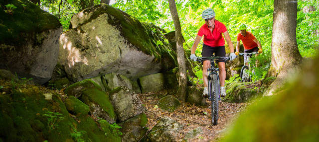Tour en bicicleta por el bosque de La Habana