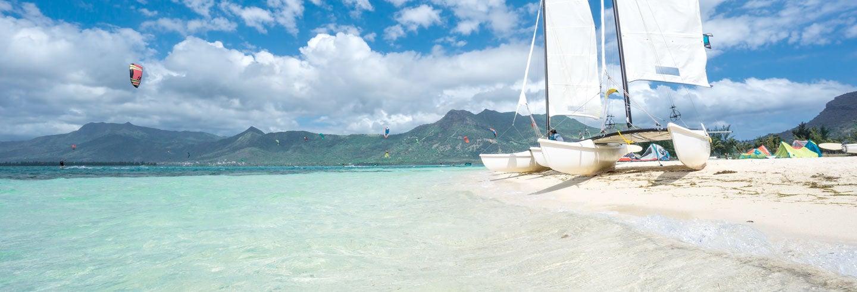 Paseo en catamarán y baño con delfines
