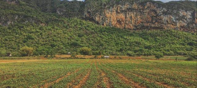 Senderismo por el Valle de Palmarito